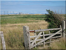 TR0417 : Grassland at Lydd Ranges by Oast House Archive