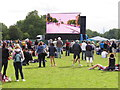 TQ2779 : Olympics triathlon Hyde Park - spectators and big screen by David Hawgood