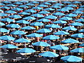 TQ3783 : Stratford: Olympic parasols by Chris Downer