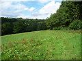 SO3629 : Field edge path near Dulas Court by Jeremy Bolwell