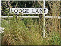 TM3679 : Lodge Lane sign by Geographer