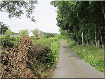 G5120 : Local road, Loughill by Richard Webb