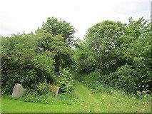 G5019 : Farm track, Carrownaleck by Richard Webb