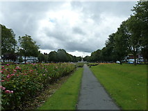 SJ3384 : Mid summer 2012 at Port Sunlight (II) by Basher Eyre