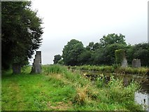 N2724 : Remains of a pedestrian bridge on the Grand Canal in Killina, Co. Offaly by JP