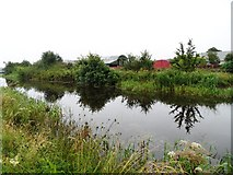 N2524 : Grand Canal in Killina, Co. Offaly by JP