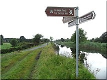 N1623 : A meeting of the ways on the Grand Canal in Turaun, Co. Offaly by JP