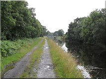 N1523 : Grand Canal in Turraun, Co. Offaly by JP