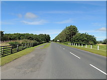 NS2006 : Road to Maidens from Turnberry by Billy McCrorie