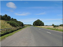 NS2006 : Road to Maidens near Turnberry by Billy McCrorie