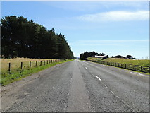 NS2006 : Road to Girvan near Turnberry by Billy McCrorie