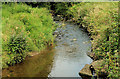 J3384 : The Three Mile Water, Monkstown, Newtownabbey by Albert Bridge