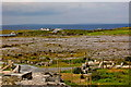 M1409 : The Burren - R477 - Murrooghtoohy - Burren Landscape, Homes, Atlantic Ocean by Joseph Mischyshyn