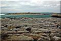 R0597 : Doolin - R479 - Harbour - Rocky Coastline & Small Nearby Offshore Island by Joseph Mischyshyn