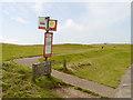 TV5895 : Bus Stop and Peace Path, Beachy Head by David Dixon