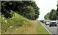 J3699 : The Belfast Road near Larne (6) by Albert Bridge