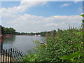 TQ2780 : Marathon Swimming 2012 Olympics in The Serpentine by A Holmes