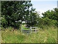 TL6147 : Kissing gate on the path to Streetly End by John Sutton