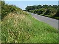 TF8137 : The road to North Creake by Richard Humphrey