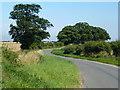 TF8138 : The winding road to North Creake by Richard Humphrey