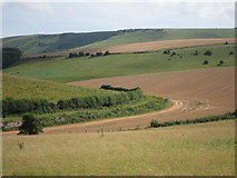 TQ3710 : South Downs at Balmer Down by Oast House Archive