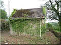 ST0524 : Lots of ivy growing again by Bill Nicholls
