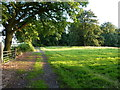SO7890 : Bridleway near Rookery wood by Richard Law