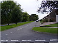 TM3876 : Walpole Road off Queens Drive by Adrian Cable
