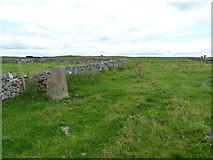 SK2155 : Blackstone's Low trig point and drystone wall by Richard Law