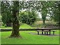 G1417 : Picnic place, Crossmolina by Richard Webb