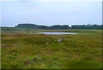 NX2753 : Moorland Lochan by Andy Farrington