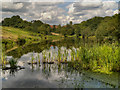 SD7606 : Manchester, Bolton and Bury Canal, Dingle Reservoir by David Dixon