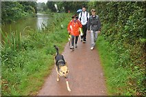 SS9612 : Tiverton : Grand Western Canal Tow Path by Lewis Clarke