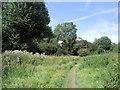 TQ2569 : NW corner of Morden Hall Park by Paul Gillett