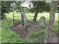 X1091 : Kiltera Ogham Stone by Hywel Williams