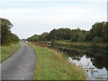 N1222 : Grand Canal in Falsk, Co. Offaly by JP