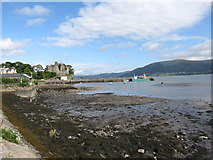 J1811 : The foreshore at Carlingford by Eric Jones