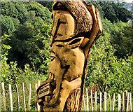 J3268 : Carving, Terrace Hill, Belfast (3) by Albert Bridge