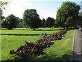 TQ2965 : Spoil heaps in Beddington Park by Stephen Craven