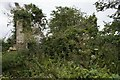 SW5634 : Ruined and overgrown by Elizabeth Scott