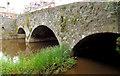 J2053 : The Regent Bridge, Dromore by Albert Bridge