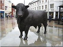 SO5140 : Hereford Bull sculpture by Philip Halling