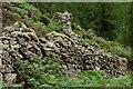 SH6341 : Stone Wall, Rhyd, Gwynedd by Peter Trimming