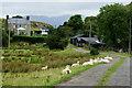 SH5940 : Farmhouse at Hir Ynys, Gwynedd by Peter Trimming