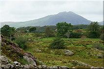 SH6441 : View From Rhyd, Gwynedd by Peter Trimming