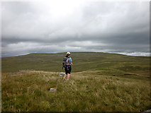 NY7719 : The summit of Tinside Rigg (624m) by Karl and Ali