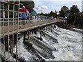SU5097 : Abingdon Weir by Colin Smith