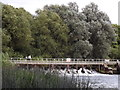 SU5097 : The Thames at Abingdon Weir by Colin Smith