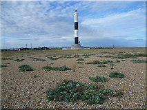 TR0916 : The new lighthouse at Dungeness by Marathon