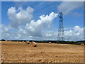 SU8315 : Pylon and straw bales by Robin Webster